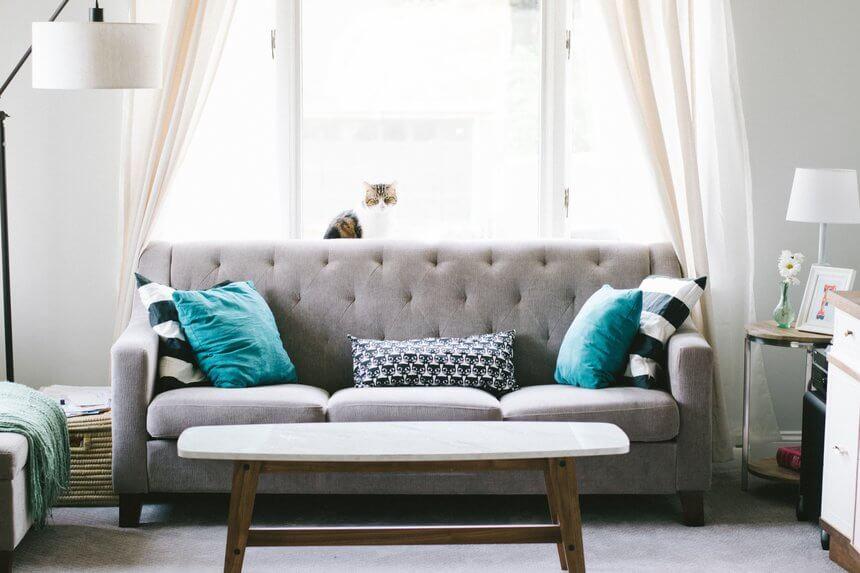 sofa cojines